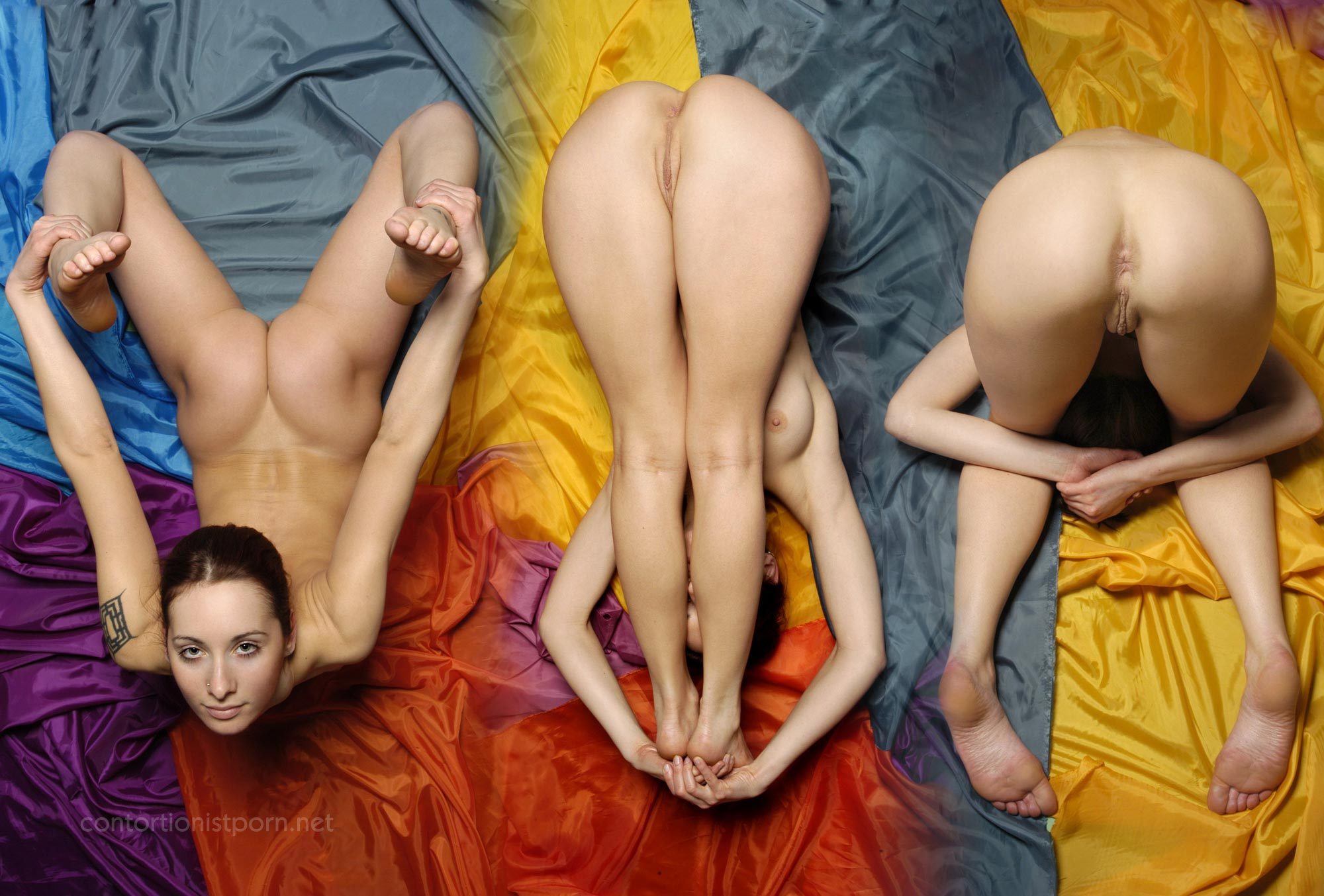 Contortionist porn photos
