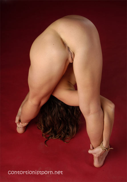 Contortionist porn